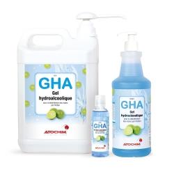 GHA - H2001