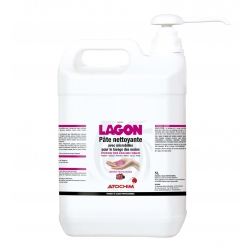 LAGON